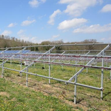 Furto moduli fotovoltaici